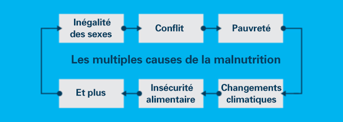 Les multiples causes de la malnutrition