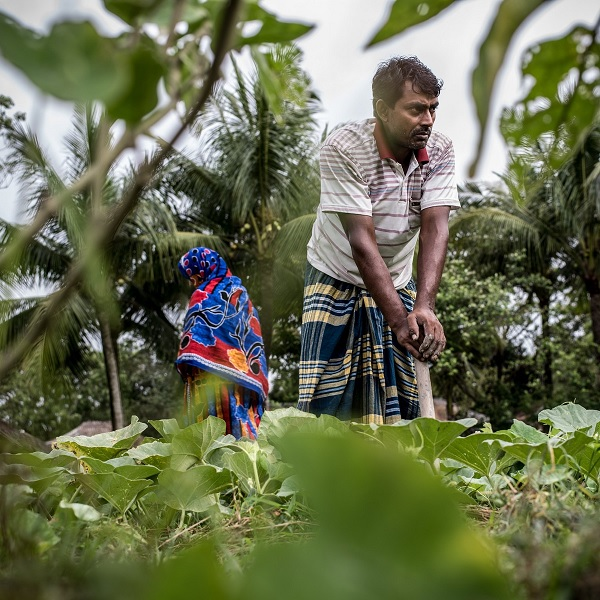 With education, advice and training support, this couple in Bangladesh are growing more nutritious foods.