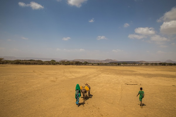 Walking day and night to find clean water in Ethiopia