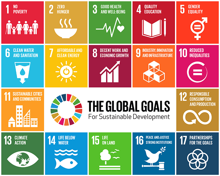 Image result for unicef goals for sustainability image